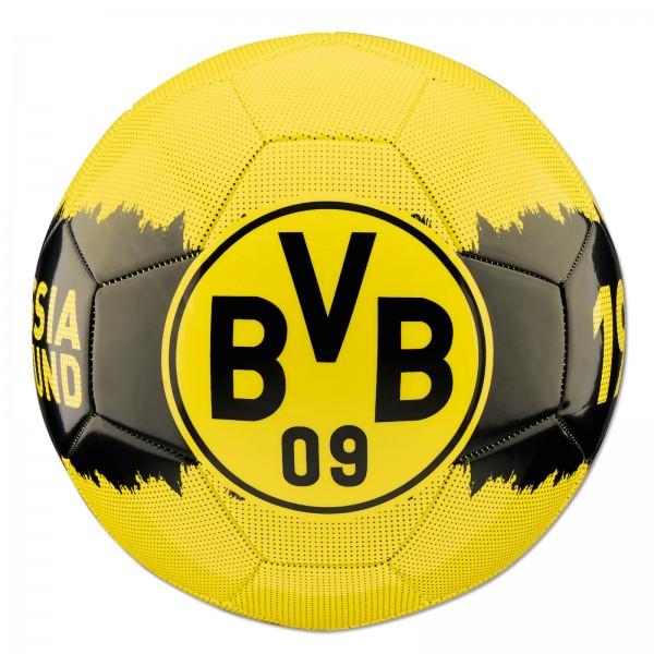 BVB Fußball Borussia Dortmund
